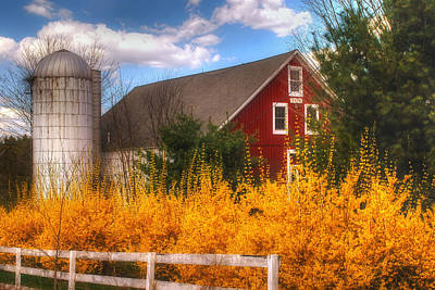 Red Barns Photograph - Sunday Afternoon by Joann Vitali