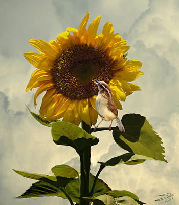 Wren Digital Art - Sunflower And Carolina Wren by IM Spadecaller