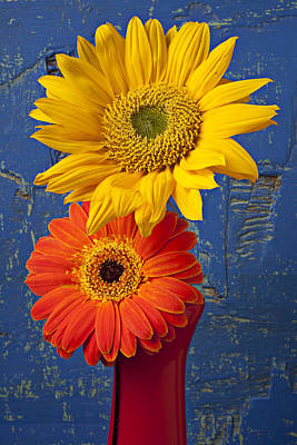 Sunflower And Mum Print by Garry Gay