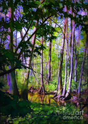 Sunlight In The Swamp Print by Judi Bagwell