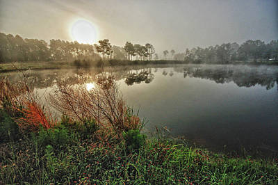 Sunrise On The Pond Print by Michael Thomas