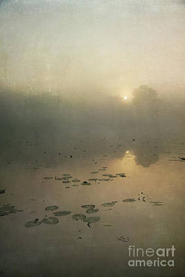 Flypaper Textures Photograph - Sunrise Through Mist by Paul Grand