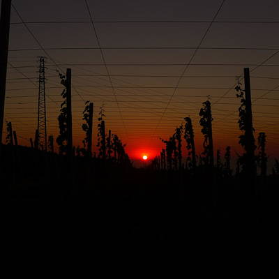 Photograph - Sunset 2 by Jl Zufiria