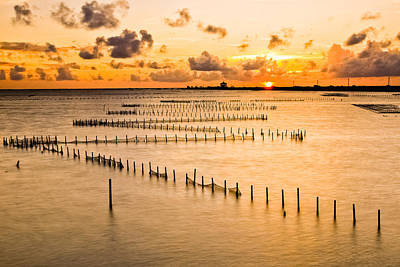 Y120817 Photograph - Sunset At Chigu Lagoon by Kyle Lin