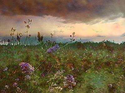 Photograph - Sunset Over Meadow by Shirley Sirois