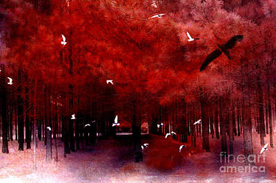 With Red. Photograph - Surreal Fantasy Red Woodlands With Birds Seagull by Kathy Fornal