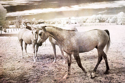 Surreal Horses Dreamy Infrared Landscape Print by Kathy Fornal