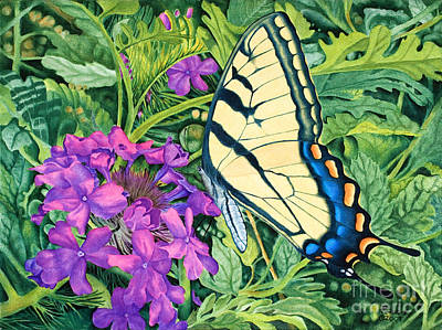 Verbena Painting - Swallowtail And Verbena by Rainelle Meridith