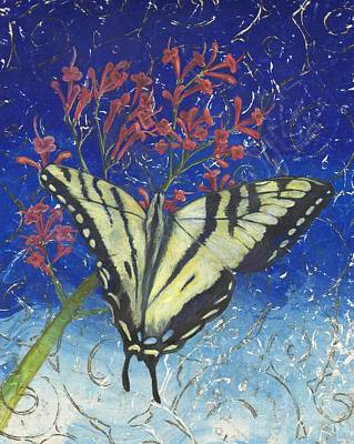 Blue Swallowtail Drawing - Swallowtail Stopped by Sara Bell