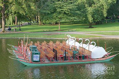Swan Boat In Boston Public Garden Print by Clarence Holmes