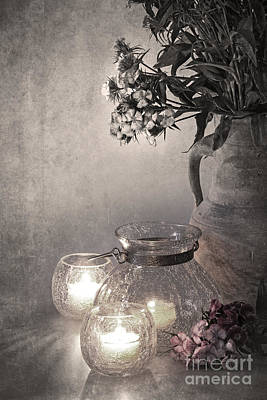 Ornate Photograph - Sweet Williams Sepia by Jane Rix