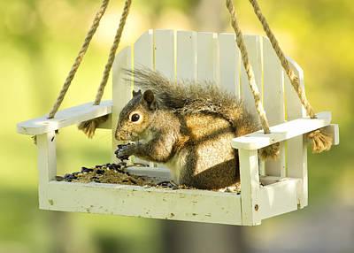 Swingin Squirrel Robber Print by Bill Tiepelman
