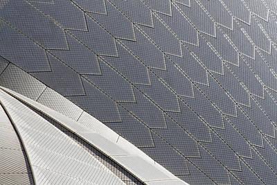 Sydney Opera House Roof Print by Martin Cameron