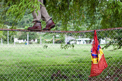 Men Shoe Photograph - Tamarind Picking On A Fence by Anya Brewley schultheiss