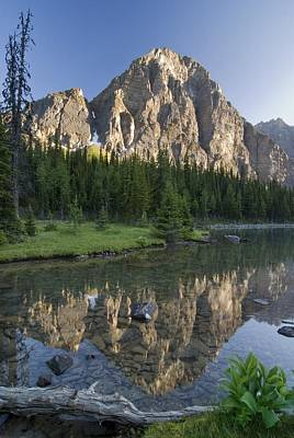 Taylor Lake, Banff National Park Print by Philippe Widling
