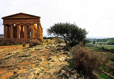 Temple Of Concordia 2 Print by Steve Bisgrove