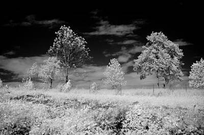 Clarksville Photograph - Tennessee Country Side by Paul Bartoszek