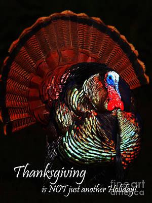 Turkey Digital Art - Thanksgiving Is Not Just Another Holiday - Painterly by Wingsdomain Art and Photography