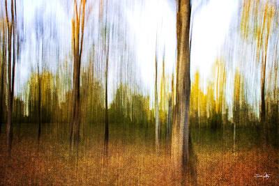 The Backyard Print by Scott Pellegrin