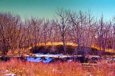 The Banks Of The South Platte River Print by David Patterson