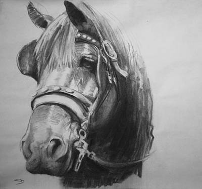 Draft Horses Drawing - The Bay by Gregg Caudell
