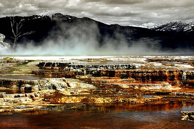The Beauty Of Yellowstone Print by Ellen Heaverlo