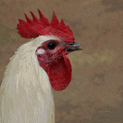 Rooster Photograph - The Boss by Ernie Echols
