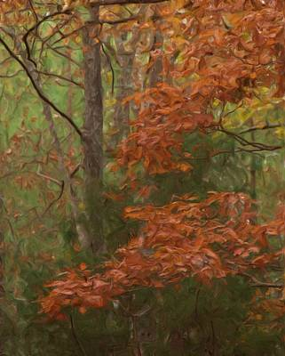 The Color Of Fall Print by Steven Richardson
