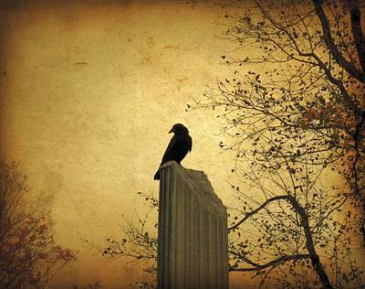 Crow Photograph - The Column by Gothicolors Donna