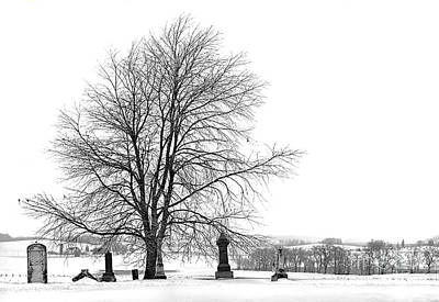Photograph - The Dead Of Winter by Jak of Arts Photography