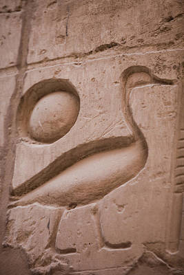 Ankh Photograph - The Duck, A Symbol That Ramses IIs Name by Taylor S. Kennedy