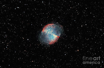 The Dumbbell Nebula Print by Rolf Geissinger