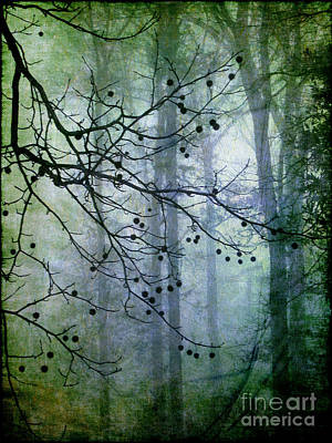 The Forest Cathedral Print by Judi Bagwell