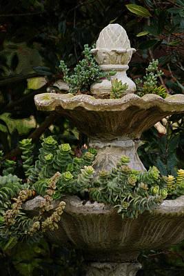 The Fountain Painterly Print by Ernie Echols