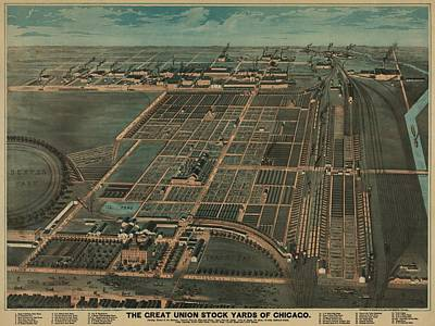 The Great Union Stock Yards Of Chicago Print by Everett