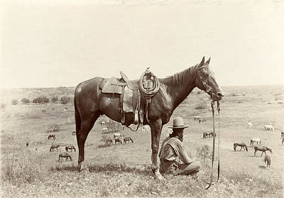 The Horse Wrangler, Photograph By Erwin Print by Everett