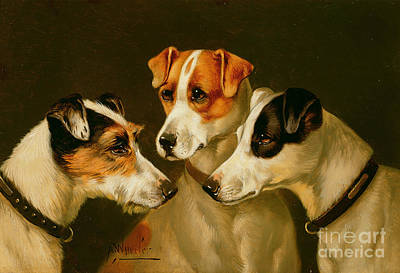 Dog Painting - The Hounds by Alfred Wheeler