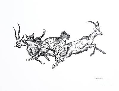 Cheetah Drawing - The Hunt Pen And Ink Drawing  by Mario Perez