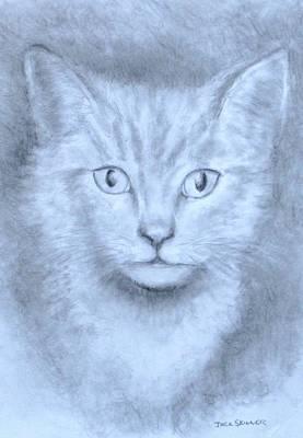 The Kitten Print by Jack Skinner