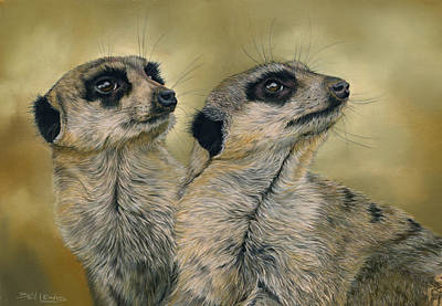 Meerkat Drawing - The Likely Lads by Bev Lewis