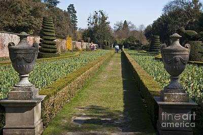 Maidenhead Photograph - The Long Garden by Donald Davis