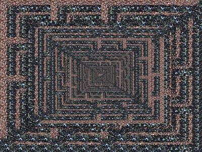The Maze Print by Tim Allen