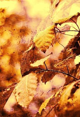 The Melody Of The Golden Rain Print by Jenny Rainbow