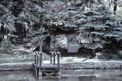 Delightful View Mixed Media - The Old Swimming Hole by Debra     Vatalaro