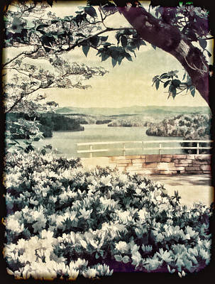 Dogwood Lake Photograph - The Overlook by Darren Fisher