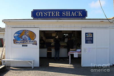 The Oyster Shack At Drakes Bay Oyster Company In Point Reyes California . 7d9835 Print by Wingsdomain Art and Photography