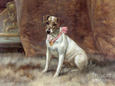 Jack Russell Painting - The Pink Bow by Maud Earl