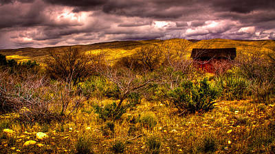 The Red Shed At Red Rock Canyon Print by David Patterson