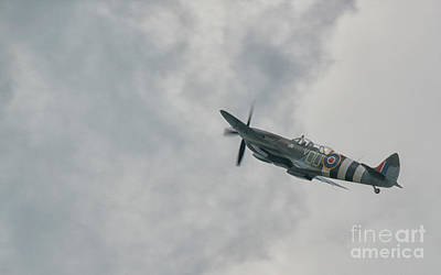 Spitfire Photograph - The Spitfire by Lee-Anne Rafferty-Evans
