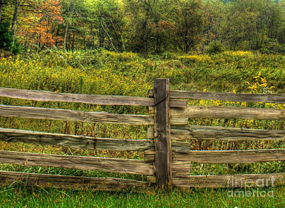 The Split Rail Meadow Print by Benanne Stiens